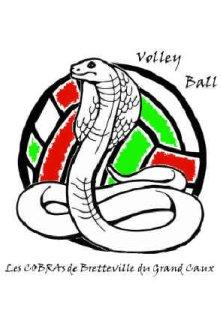 Les cobras de bretteville